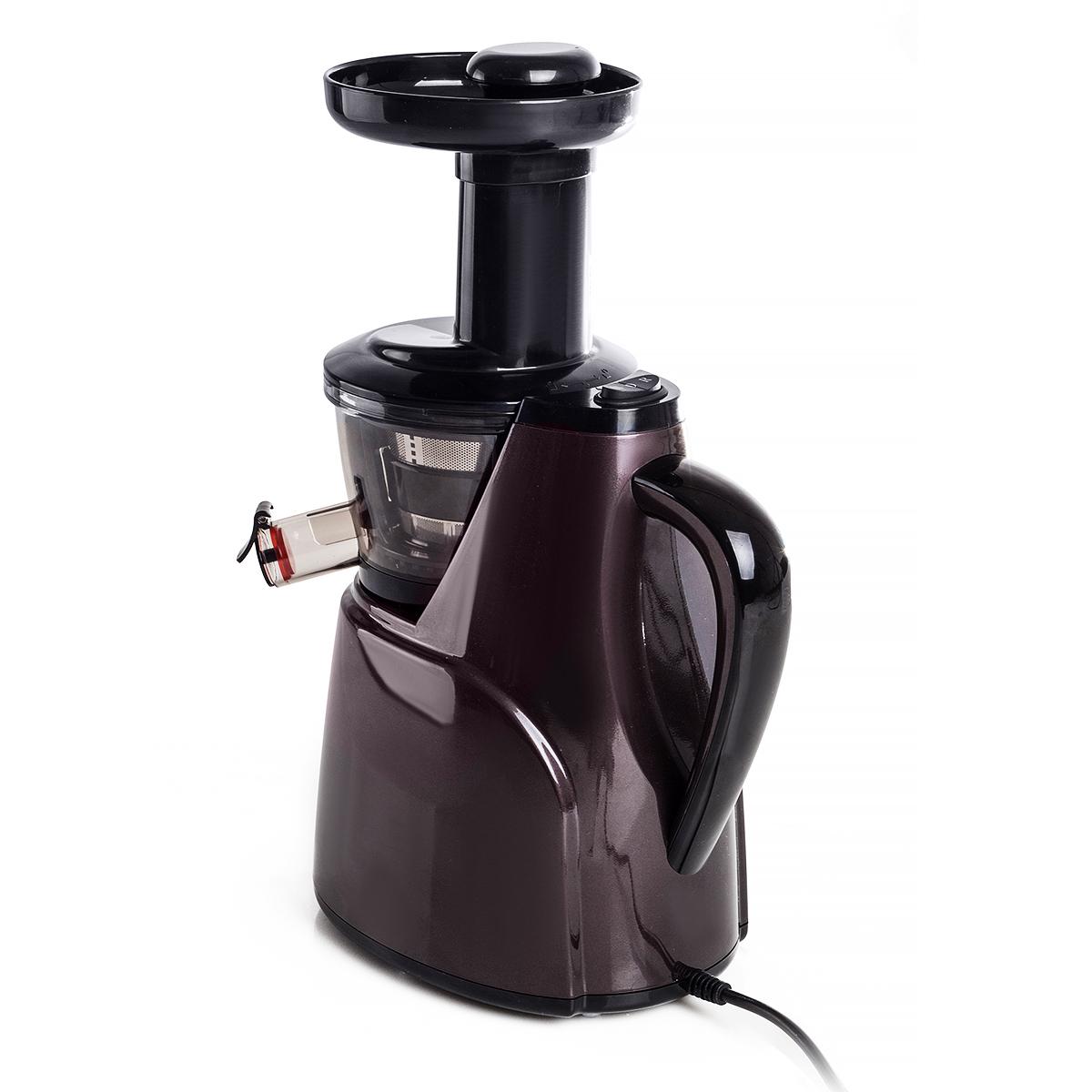 Entsafter Saftpresse Obstpresse Gemüsepresse Slow Juicer  ~ Entsafter Ebay